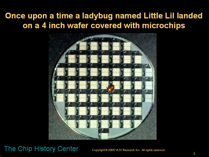 The lady bug and the microchip - A children's story about microns and nanometers